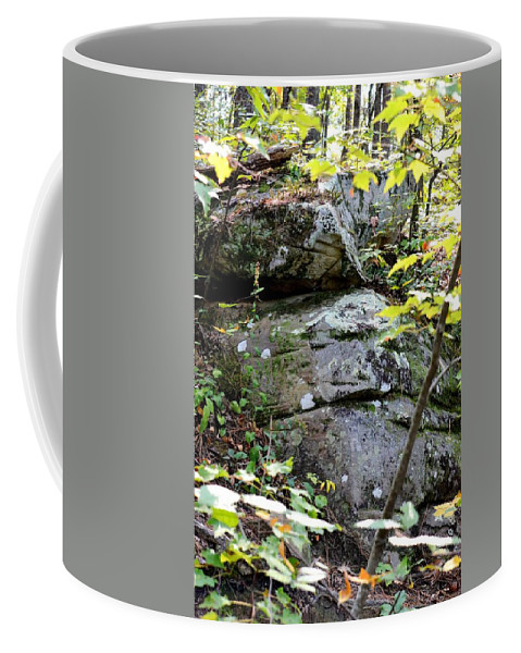 Nature's Mossy Boulders Coffee Mug featuring the photograph Nature's Mossy Boulders by Maria Urso