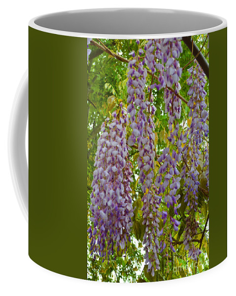 Scented Coffee Mug featuring the photograph Natures Perfume by Alys Caviness-Gober