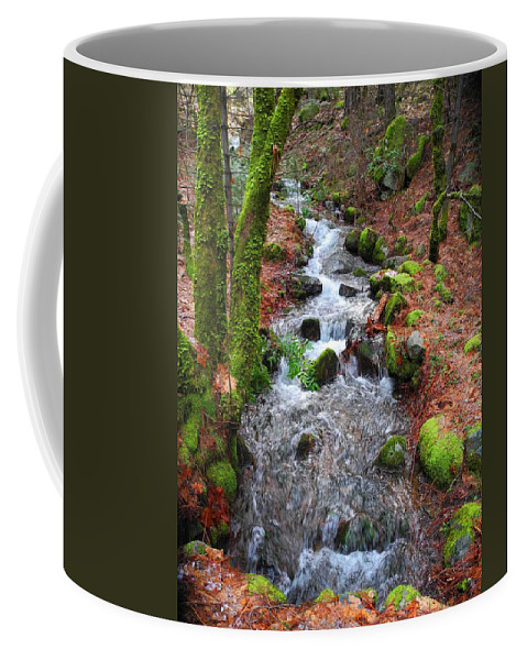 Photography Coffee Mug featuring the photograph Nature's Rush by Sue McElligott