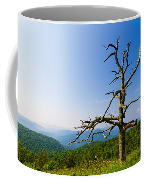 Tree Coffee Mug featuring the photograph Nature's Sculpture by Gaurav Singh