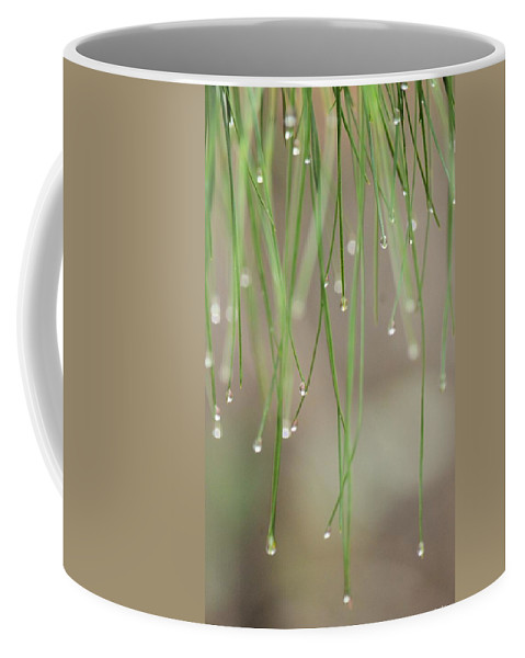 Nature's Soft Reflections Coffee Mug featuring the photograph Nature's Soft Reflections by Maria Urso