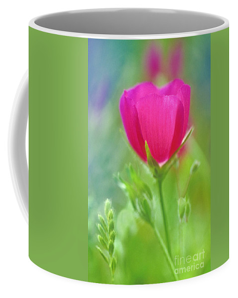 North America Coffee Mug featuring the photograph Natures Winecup South Texas by Dave Welling