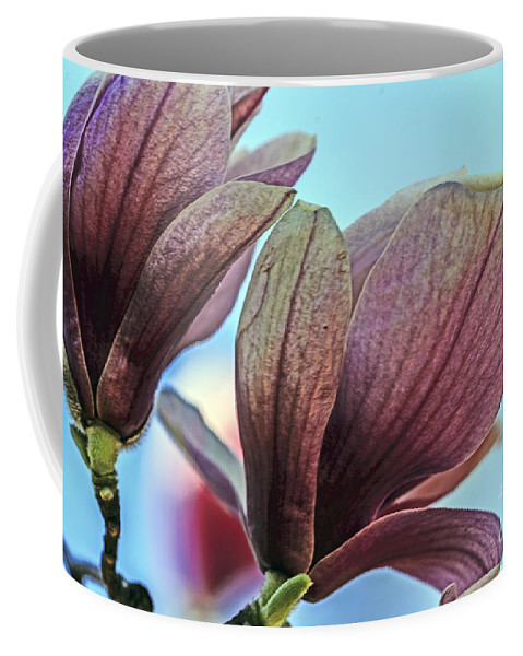 Season Coffee Mug featuring the photograph Nature's Zenith by Elvis Vaughn