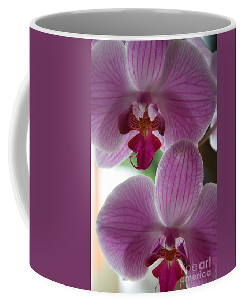 Orchid Coffee Mug featuring the photograph Neat Faces by Christiane Schulze Art And Photography