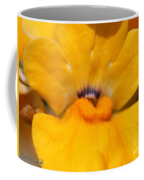 Mccombie Coffee Mug featuring the photograph Nemesia Named Angelart Pear by J McCombie