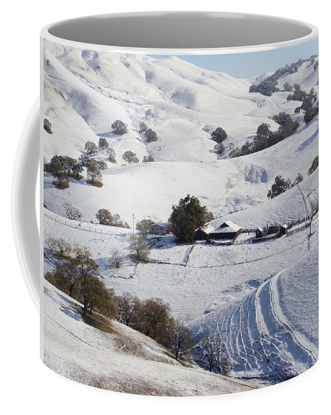 Snow Coffee Mug featuring the photograph Never Snows In California by Donna Blackhall
