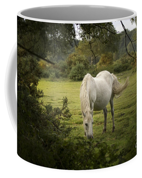 New Forest Coffee Mug featuring the photograph New Forest Pony by Angel Ciesniarska