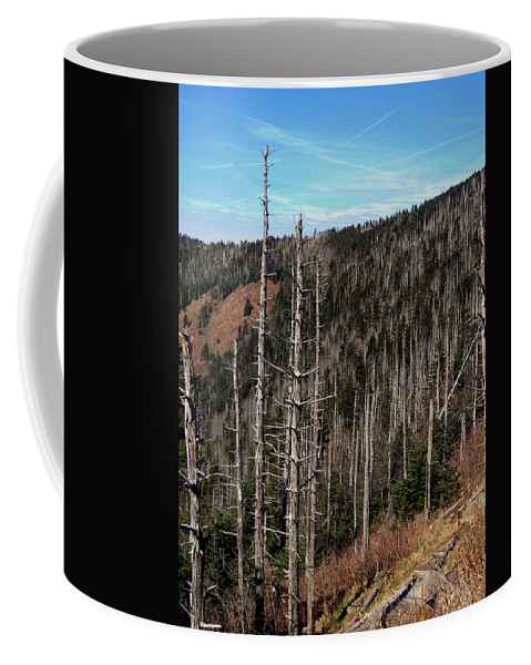 Pines Coffee Mug featuring the photograph New Growth by Skip Willits