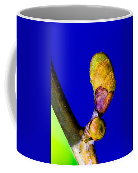 New Leaf Coffee Mug featuring the photograph New Leaf by Edgar Laureano