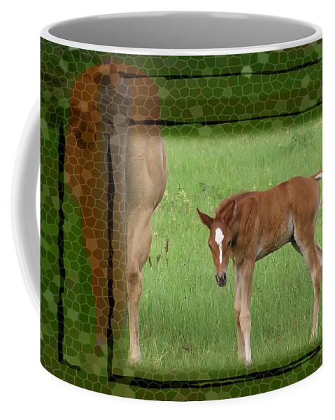 Foal Coffee Mug featuring the photograph New To The World by Shannon Story