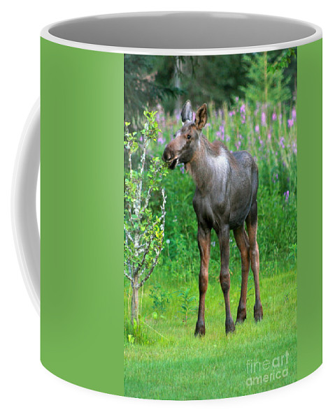 Moose Coffee Mug featuring the photograph Nibbler by Rick Monyahan