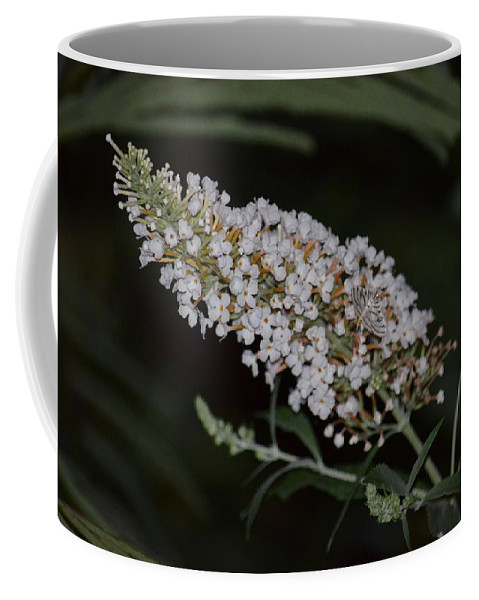 Night Whites Coffee Mug featuring the photograph Night Whites by Maria Urso