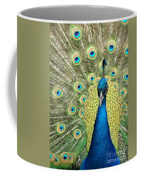 Amazing Coffee Mug featuring the photograph Noble Peacock by Sabrina L Ryan