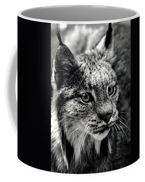 Animal Coffee Mug featuring the photograph North American Lynx In The Wild. by Bob Orsillo