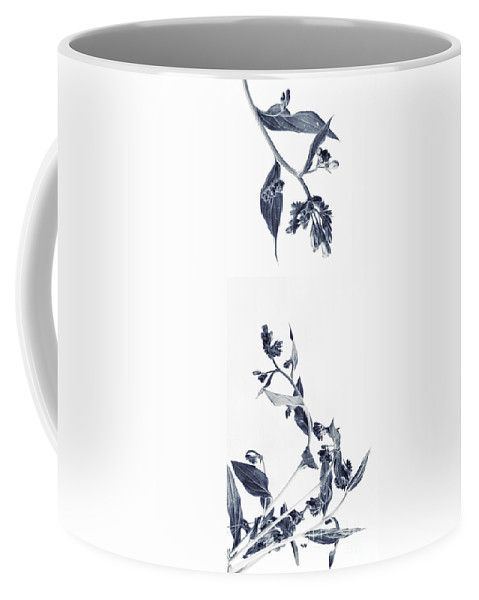 Accent Coffee Mug featuring the photograph Northern Bluebells by Priska Wettstein