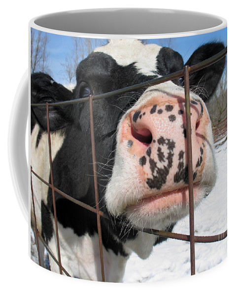 Cow Coffee Mug featuring the photograph Nosy by Ann Horn