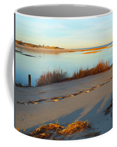 November Coffee Mug featuring the photograph November Chill by Dianne Cowen