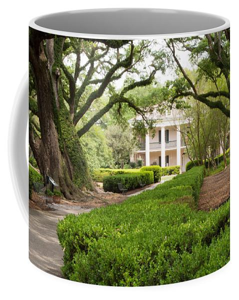 Louisiana Coffee Mug featuring the photograph New Orleans Oak Alley Plantation by JG Thompson