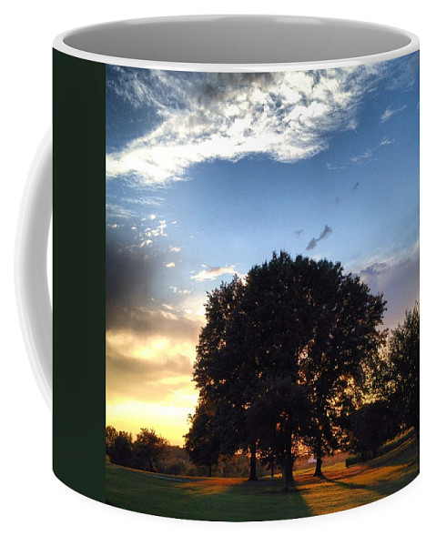 Tree Coffee Mug featuring the photograph Oak Tree At The Magic Hour by Angela Rath