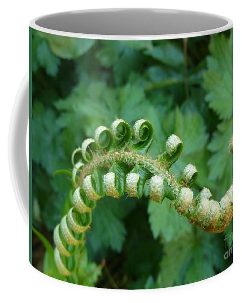 Fern Coffee Mug featuring the photograph Octo-fern by Rain Shine