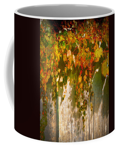 Fall Coffee Mug featuring the photograph October Colors by John Anderson