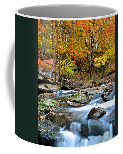 Odd Coffee Mug featuring the photograph Odd Shape by Frozen in Time Fine Art Photography