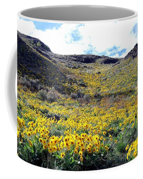 Wild Sunflowers Coffee Mug featuring the photograph Okanagan Valley Sunflowers 1 by Will Borden