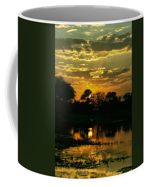 Okavango Swamp Coffee Mug featuring the photograph Okavango Sunset by Amanda Stadther