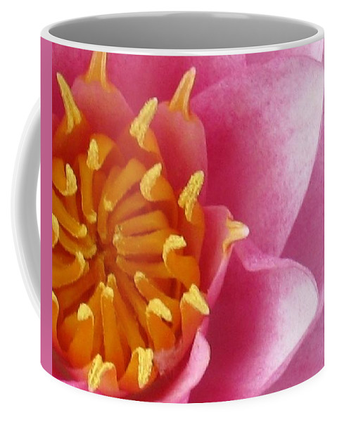 Flower Coffee Mug featuring the photograph Okeefe Lily Blossom by Debbie Finley