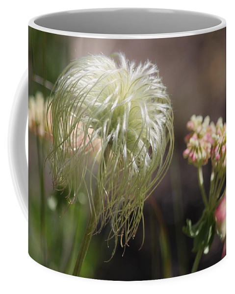 Nature Coffee Mug featuring the photograph Old Man's Beard by Linda Richardson