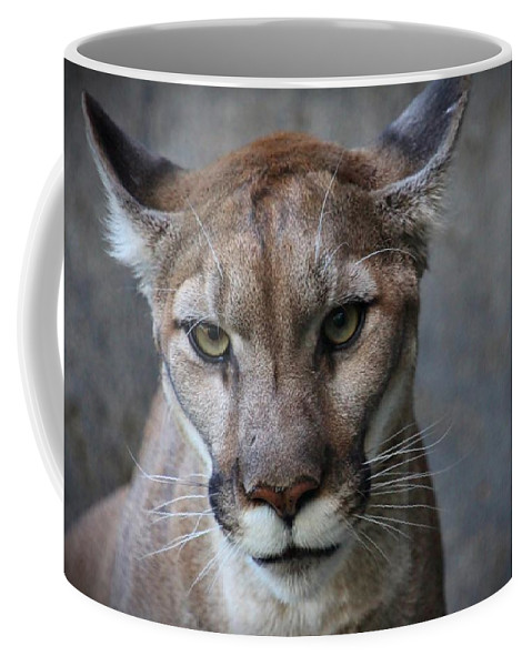 Cougar Coffee Mug featuring the photograph Olympia by Christopher Miles Carter
