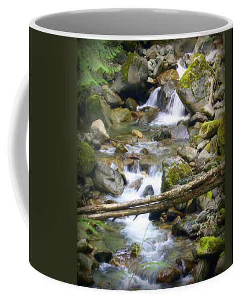Olympic Mountains Coffee Mug featuring the photograph Olympic Range Stream by Marty Koch