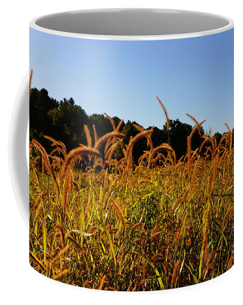 Foliage Coffee Mug featuring the photograph On The Edge by Jeffery L Bowers
