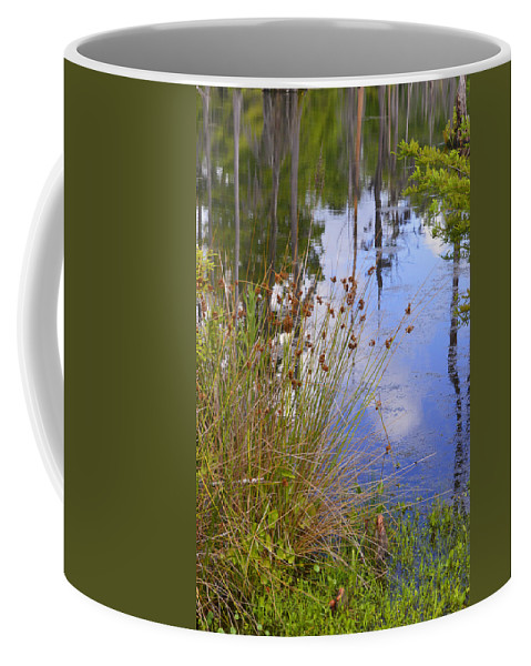 Water Coffee Mug featuring the photograph On The Edge by Leticia Latocki