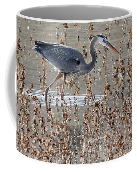 Birds Coffee Mug featuring the photograph On The Hunt by Bob Hislop