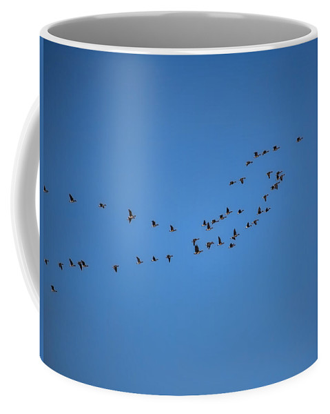 Stretch Coffee Mug featuring the photograph on the way to summer Stretch of geese moving north by Leif Sohlman