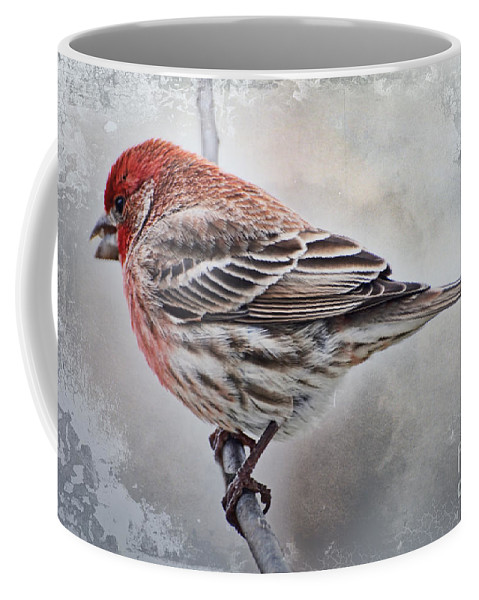 Nature Coffee Mug featuring the photograph Once Upon A Winters Day by Debbie Portwood