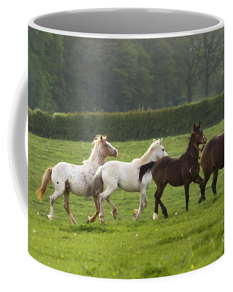 Horse Coffee Mug featuring the photograph One After One by Angel Ciesniarska