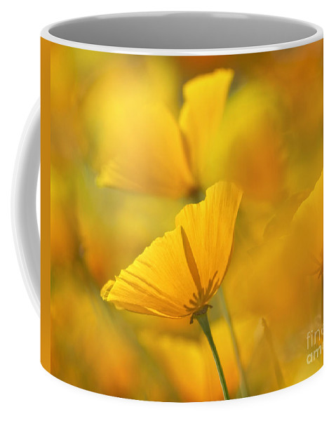 Orange Coffee Mug featuring the photograph One Among Many by Claudia Kuhn