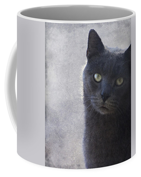 Russian Coffee Mug featuring the photograph One Of Those Mysterious Blue Days by Kathy Clark