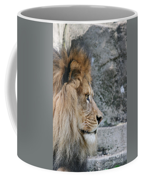 Lion Coffee Mug featuring the photograph Onyo #15 by Judy Whitton
