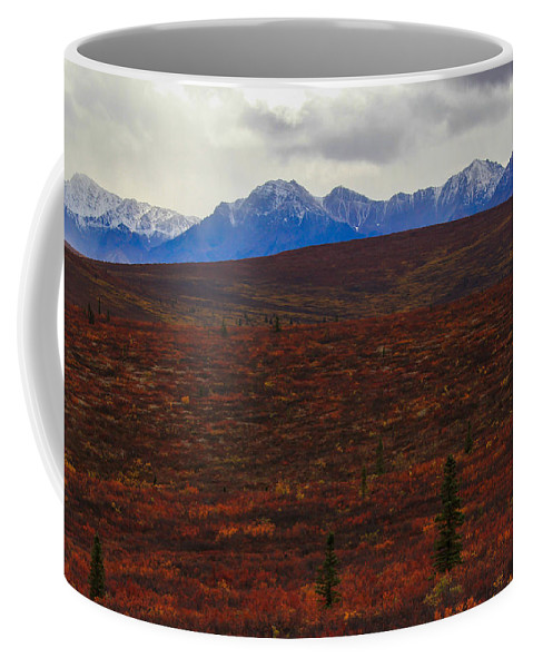 Tunda Coffee Mug featuring the photograph Open And Wild by Kevin Buffington