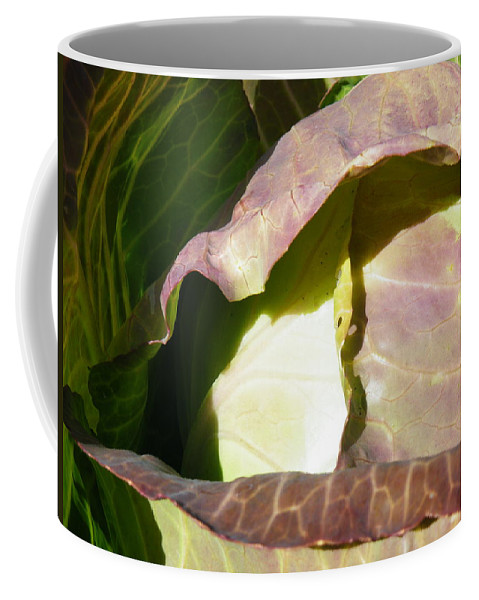 Geometry Coffee Mug featuring the photograph Opening Geometry by Brian Boyle