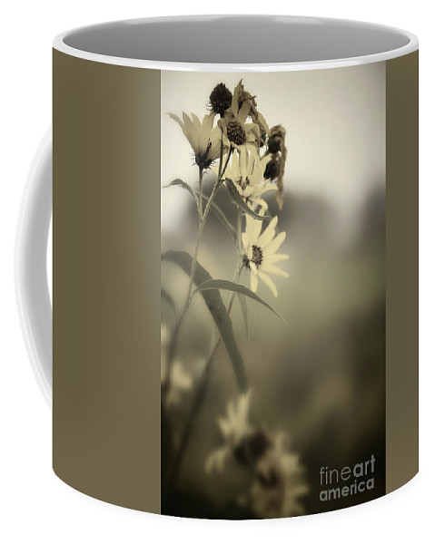 Flowers; Dead; Alive; Daisy; Daisies; Plant; Nature; Sky; Trees; Landscape; Out Of Focus; Blur; Blurred; Blurry; Light; Dark; Side; Opposite; Opposed; Conflict; Sepia; Duotone; Color; Yellow; Green; Overcast; Fall; Autumn; Wilt; Wilted Coffee Mug featuring the photograph Opposites by Margie Hurwich