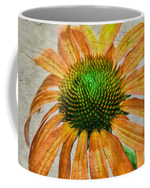 Flower Coffee Mug featuring the photograph Orange Crackle by Deborah Benoit
