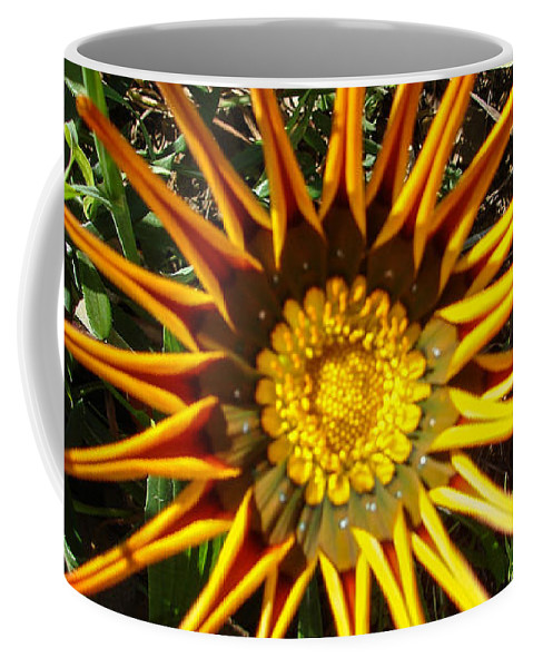 Flowers Coffee Mug featuring the photograph Orange Curl by Carl Moore