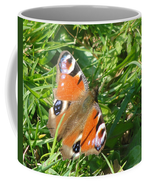 Butterfly Coffee Mug featuring the photograph Orange Flutter by Tiffany Erdman