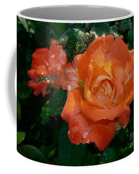 Orange Rose Coffee Mug featuring the photograph Orange Rose II by Jacqueline Russell