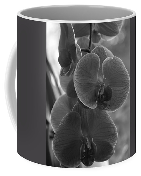Black Coffee Mug featuring the painting Orchid Cluster by Kirt Tisdale