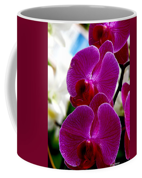 Art For The Wall...patzer Photography Coffee Mug featuring the photograph Orchid by Greg Patzer